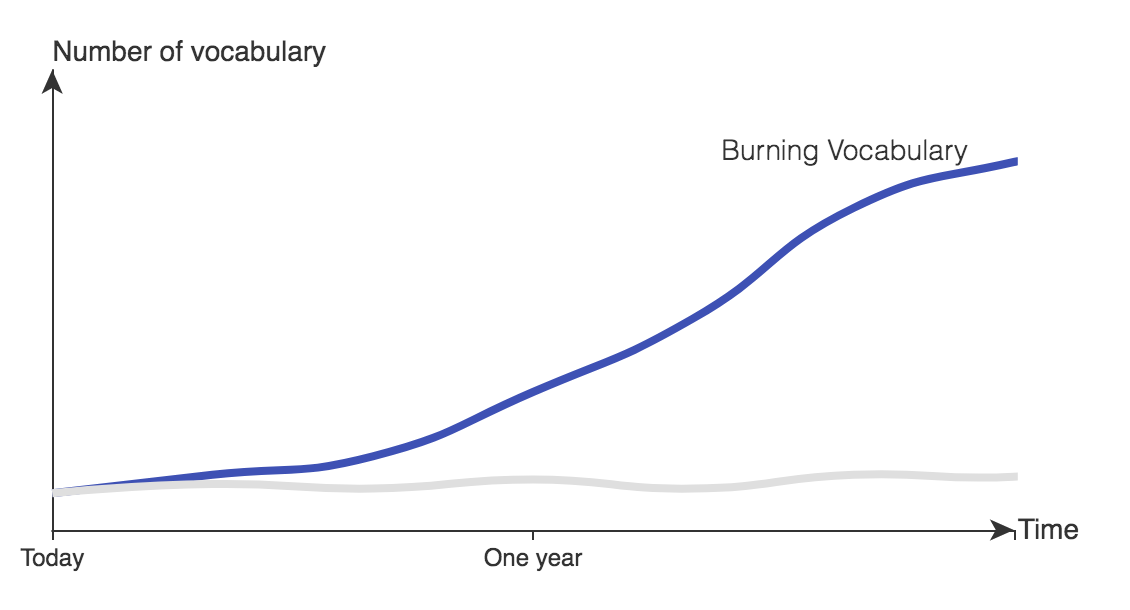 burning vocabulary curve